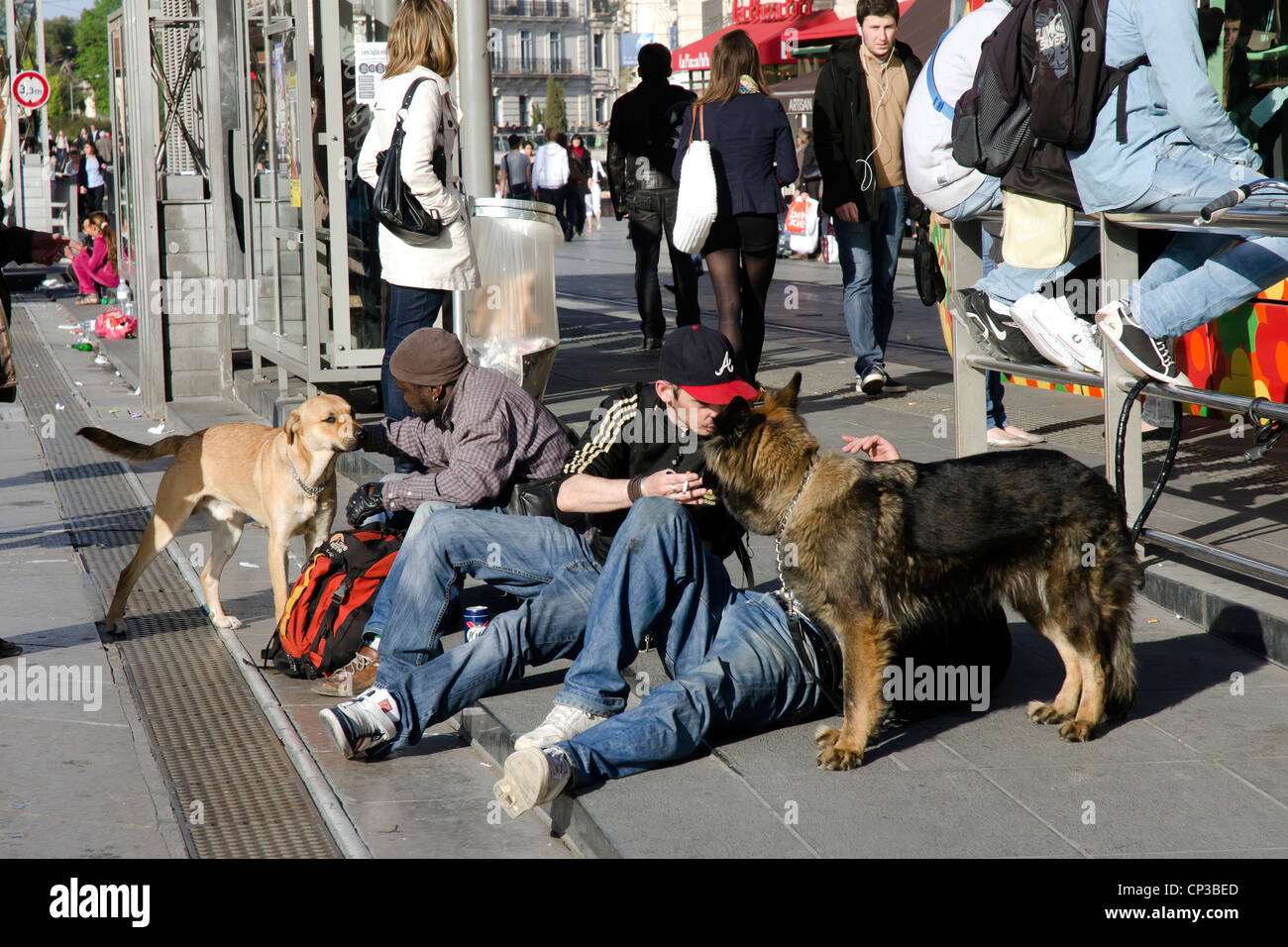 Travellers with their dogs in the center of Montpellier at tramway stop. - Stock Image
