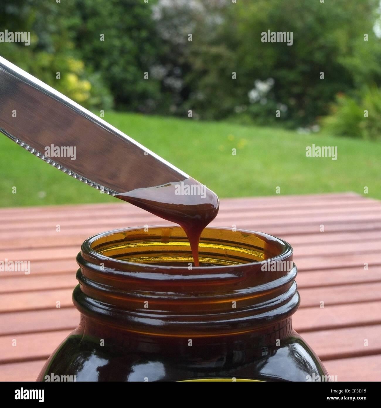 Marmite or Vegemite on a Knife - Stock Image