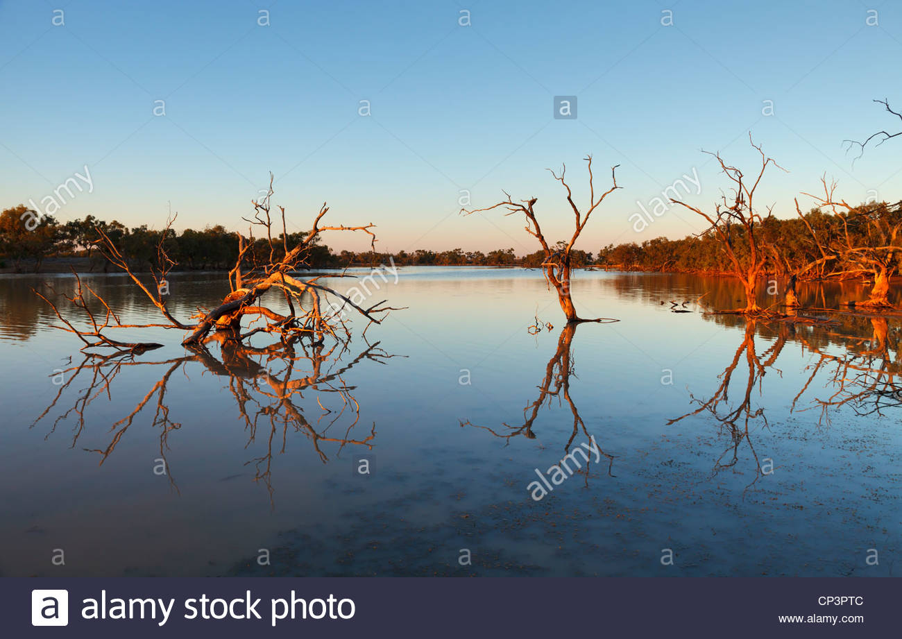 Early morning light at Cardenyabba Lagoon, Kilcowera Station, Outback Queensland, Australia - Stock Image