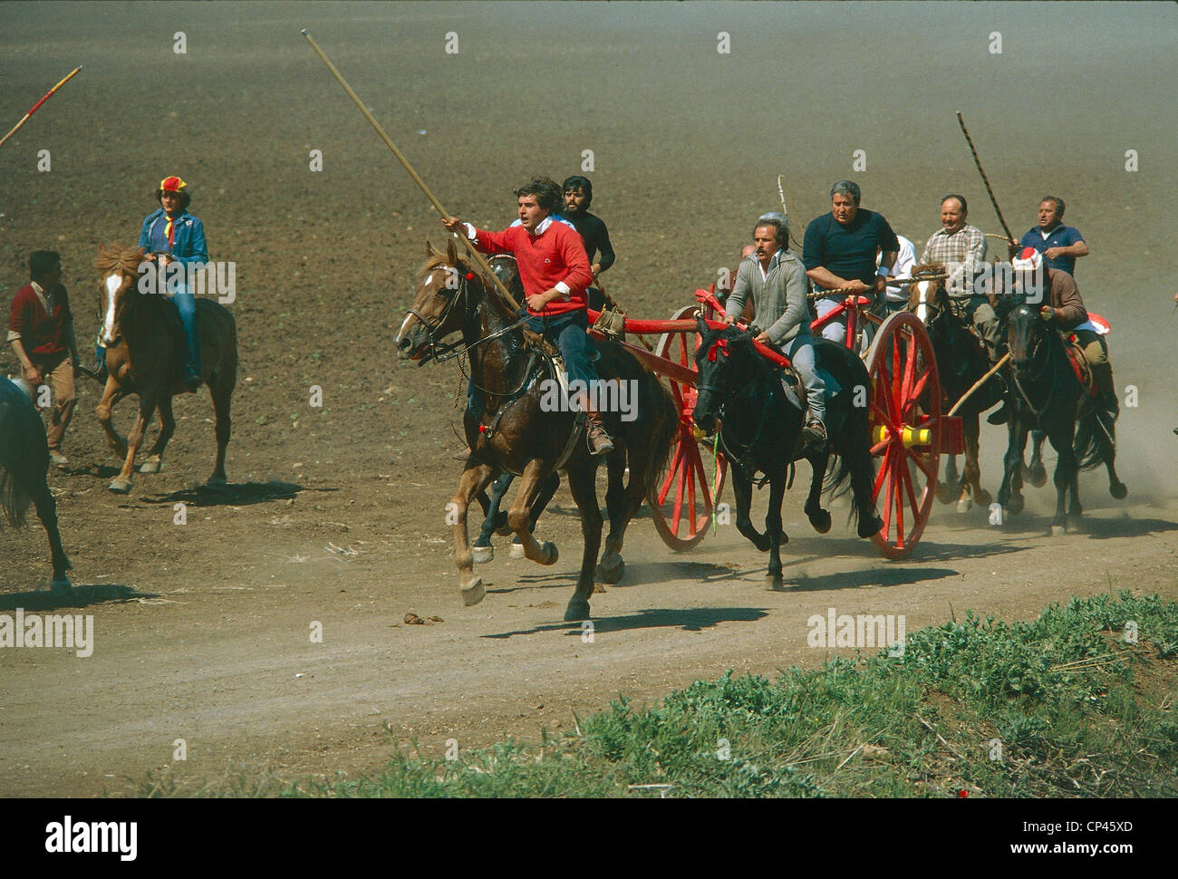 Molise - San Martino in Pensilis (Cb). Chariot race (A carrees Carrese o) - Stock Image