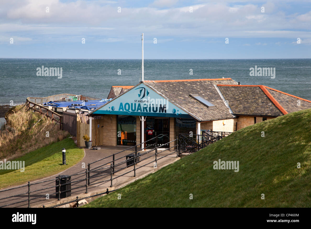 St Andrews Aquarium Fife Scotland - Stock Image
