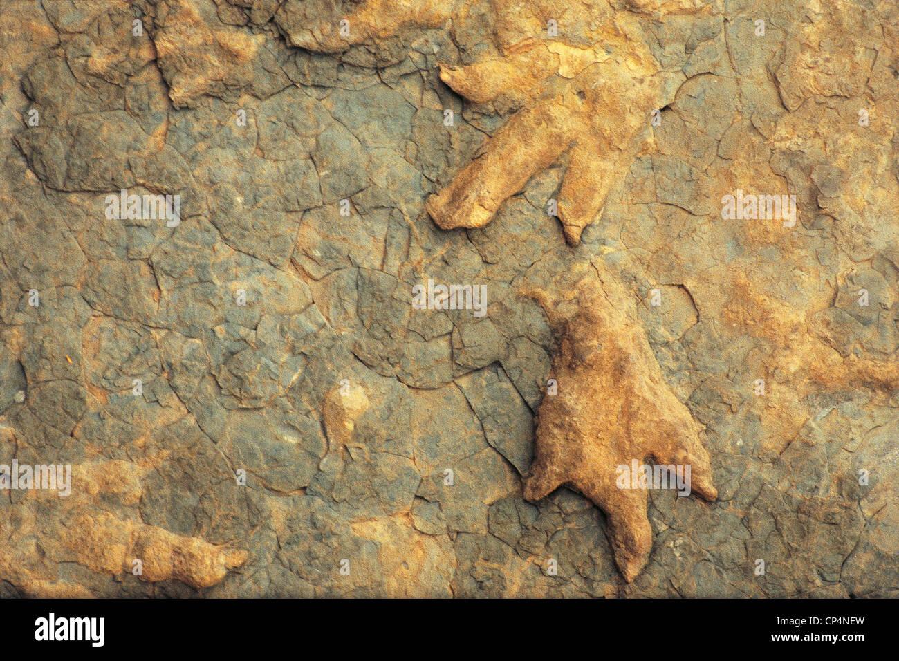 LESOTHO dinosaur footprints NEAR Leribe - Stock Image