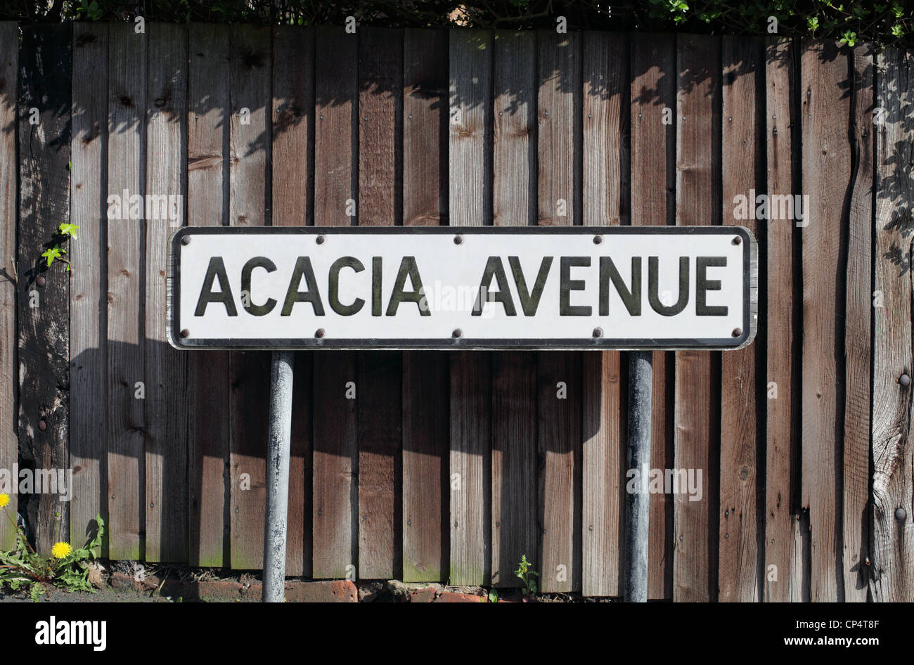 Acacia Avenue road sign, Hove, East Sussex. - Stock Image