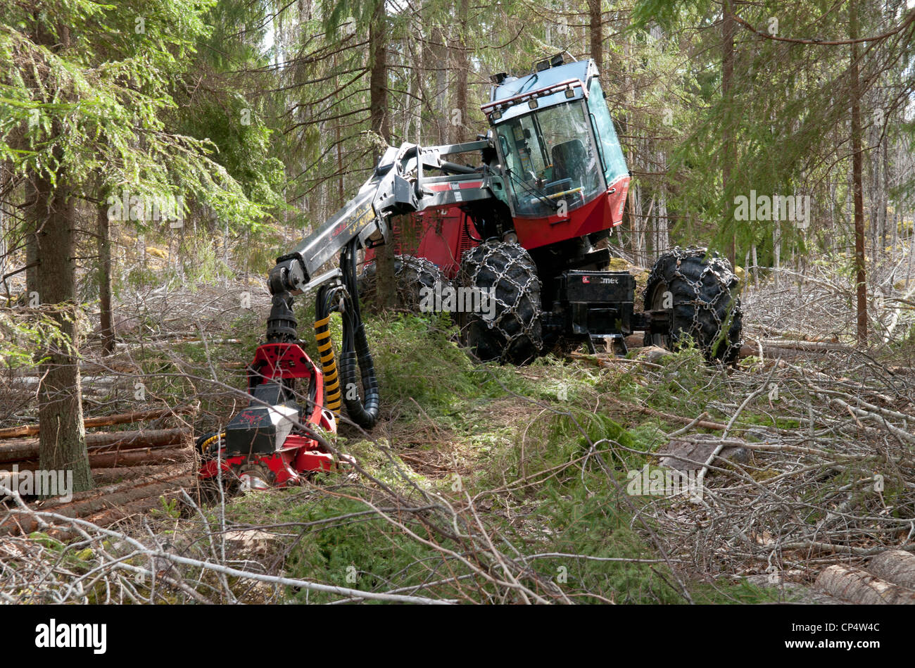 A Valmet tree chopper in the woods - Stock Image