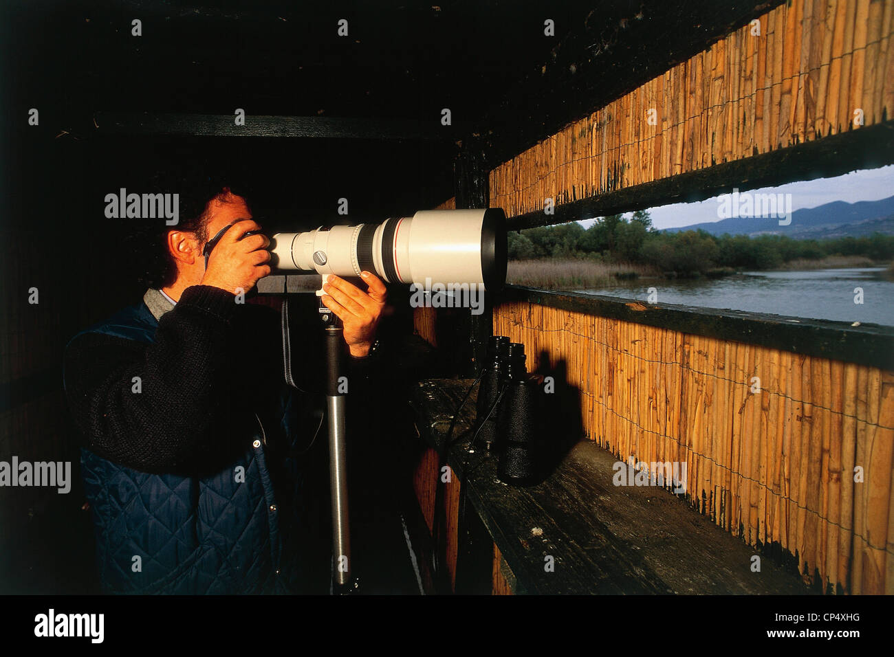 Umbria - Alviano (Tr) - WWF - Bird watching from a hide - Stock Image