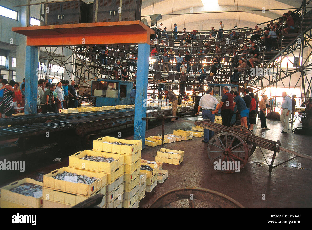 San Benedetto Del Tronto Marche Fish Market Stock Photo