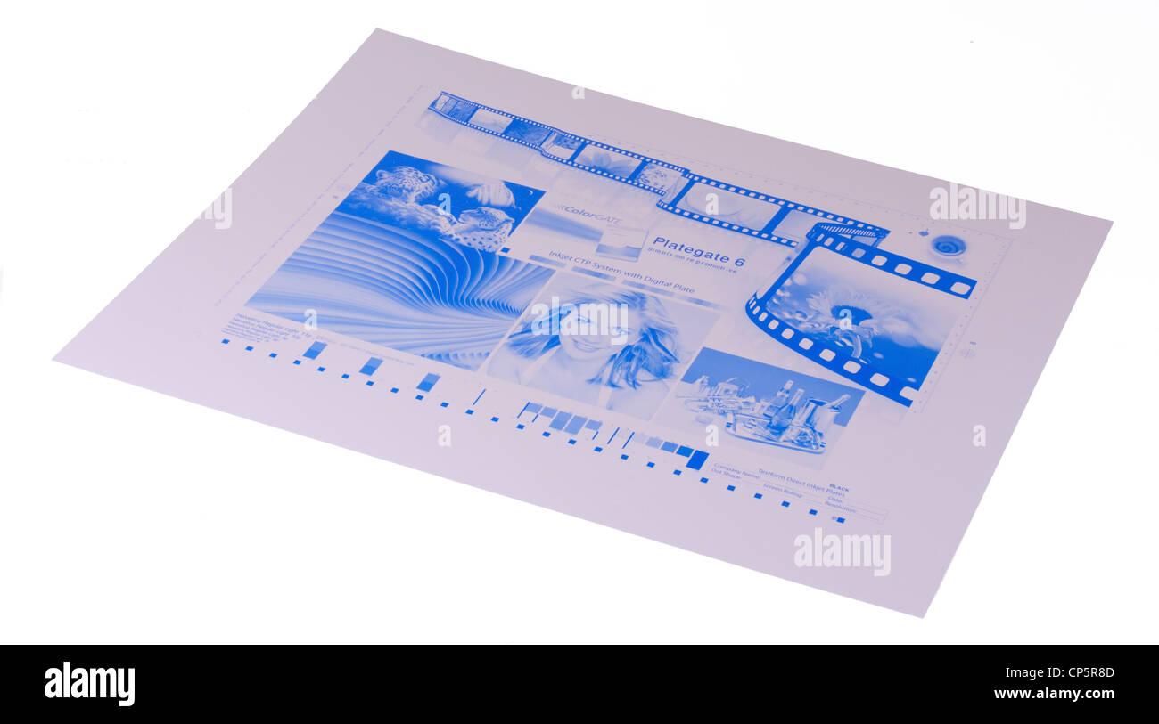 VIM digital printing plates for Offset Printing Press - Stock Image