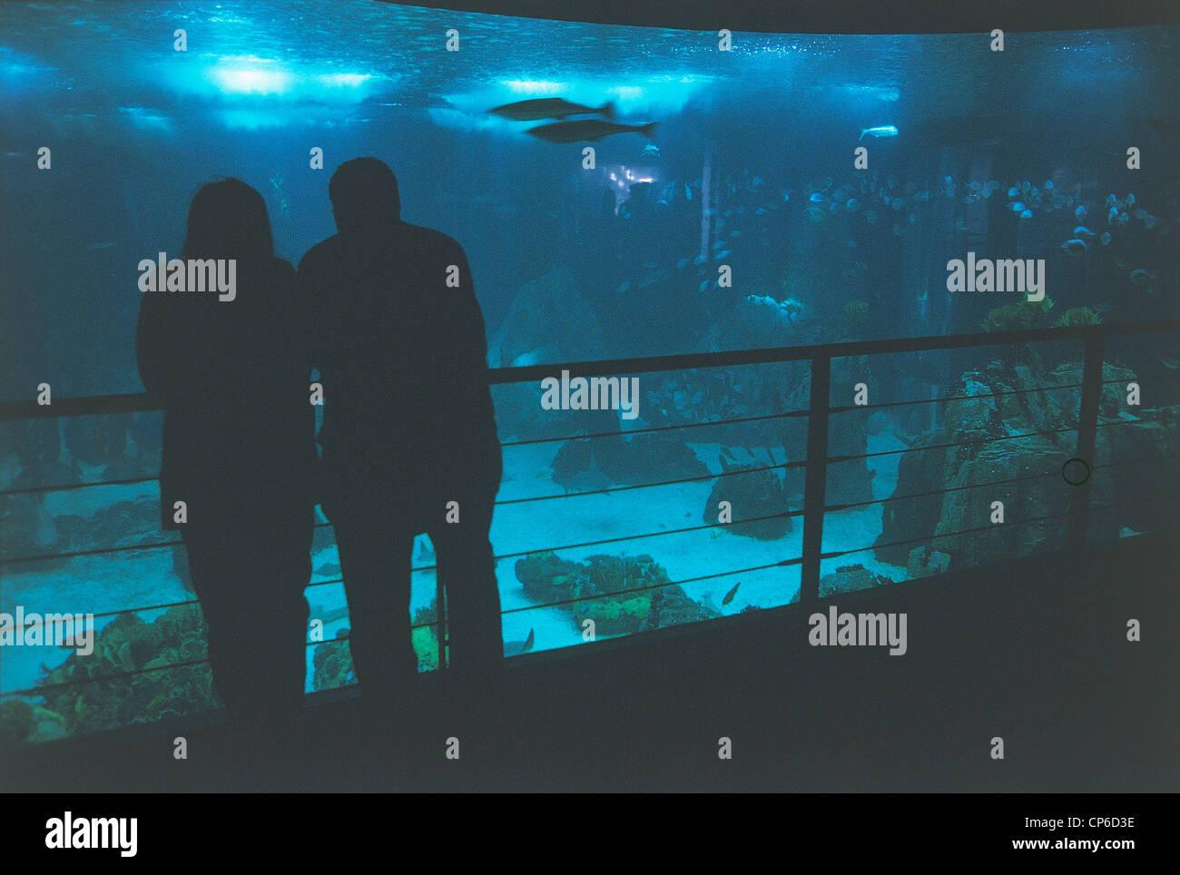 Portugal Lisbon Parque das Nac?es, Expo '98. Oceanarium (aquarium dedicated to ocean) (architect Peter Chermayeff, - Stock Image