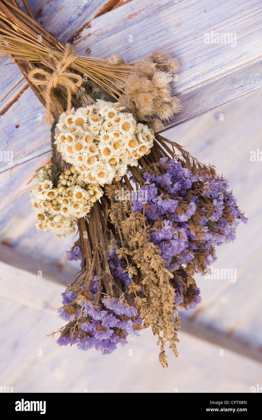 Dried flowers arranged and hung in a potting shed at RHS Garden Harlow Carr Stock Photo