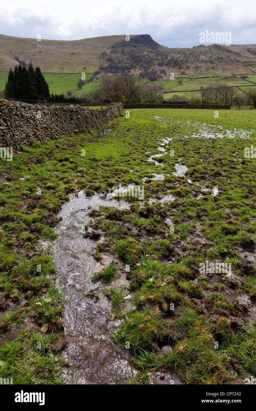 A stream of water flows through waterlogged farmland after days of rain, Nether Booth, Derbyshire, England, UK Stock Photo