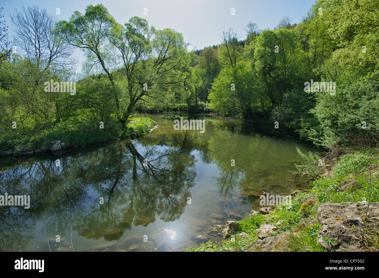 The bend of the river Rems at Lorch with a tree reflected in it - Stock Image