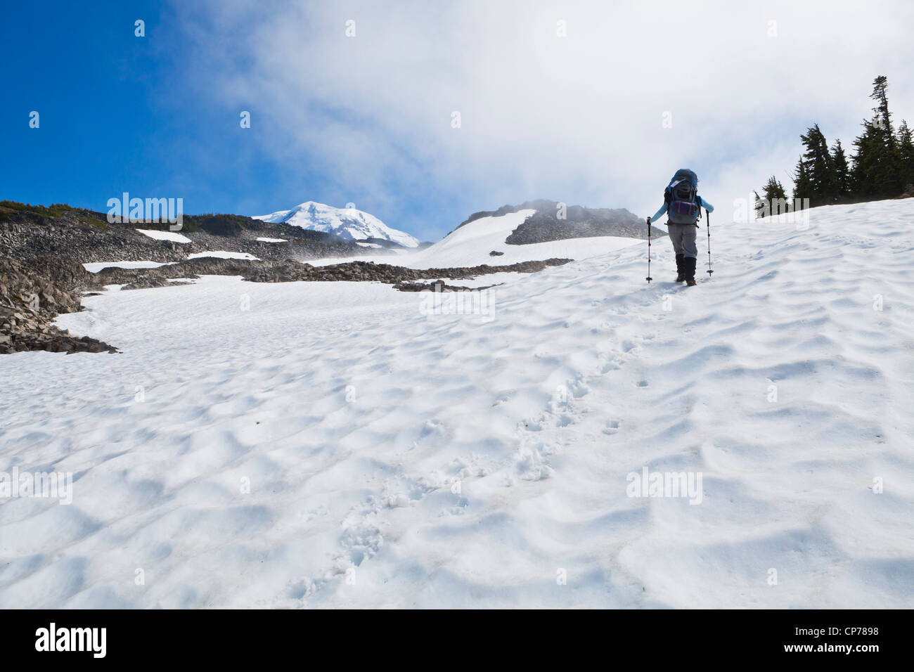 A woman wearing a backpack hiking up a steep snow field in Mount Rainier National Park, Washington, USA. Stock Photo