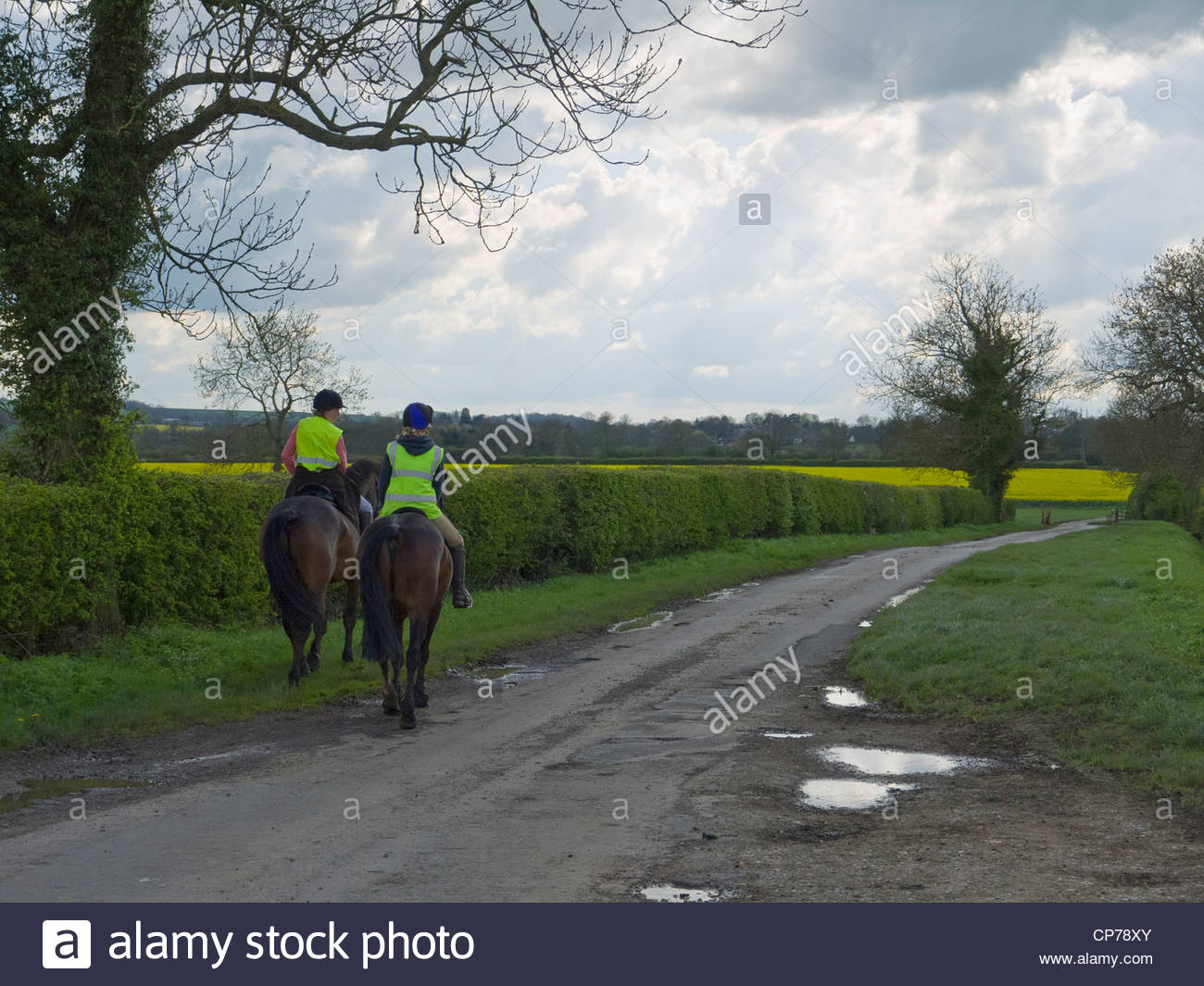 Horse Riders on Country Lane Northamptonshire England  foreground - Stock Image