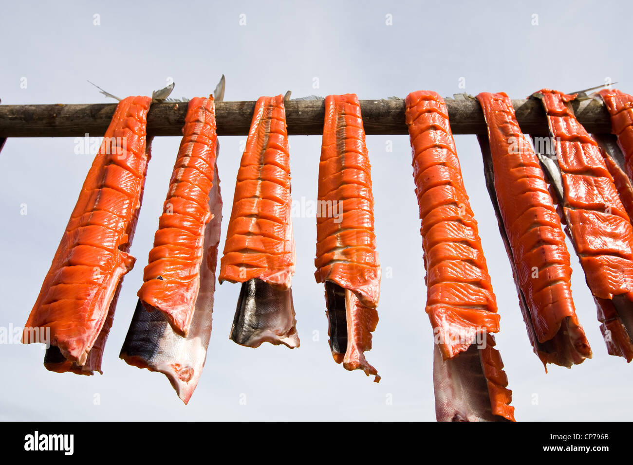 Subsistance caught Bristol Bay Sockeye salmon drying on a rack, Iliamna, Southwest Alaska, Summer - Stock Image