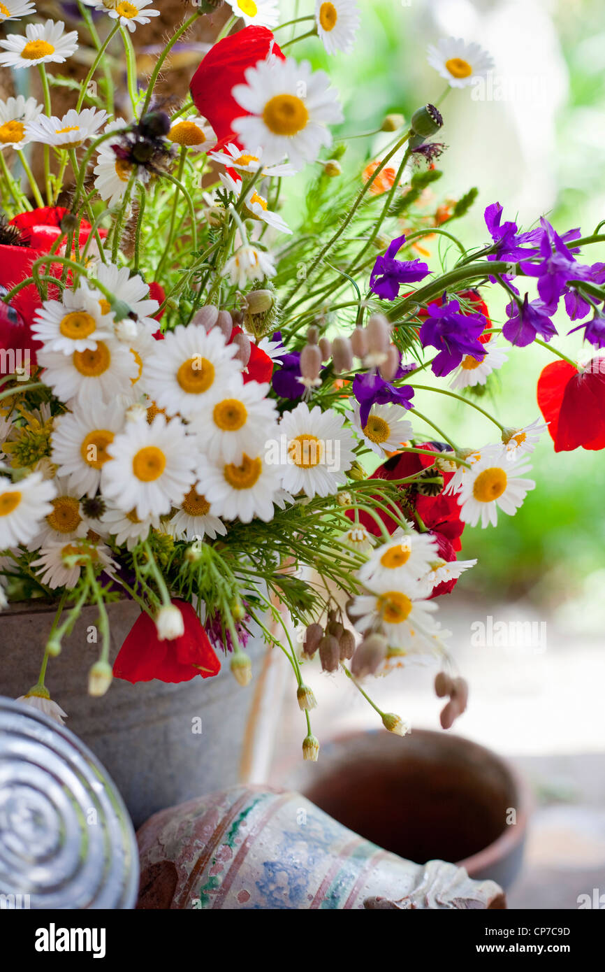 Container with mixed flower bouquet including Daisies, Argyranthemum frutescens, and red Field poppies, Papaver - Stock Image