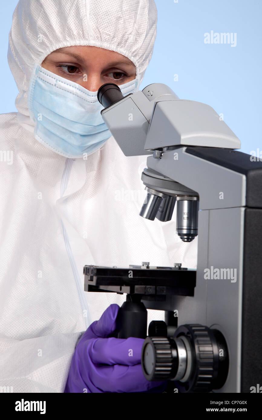 Photo of a biochemist looking through a stereo optical laboratory microscope at a specimen on a slide. - Stock Image