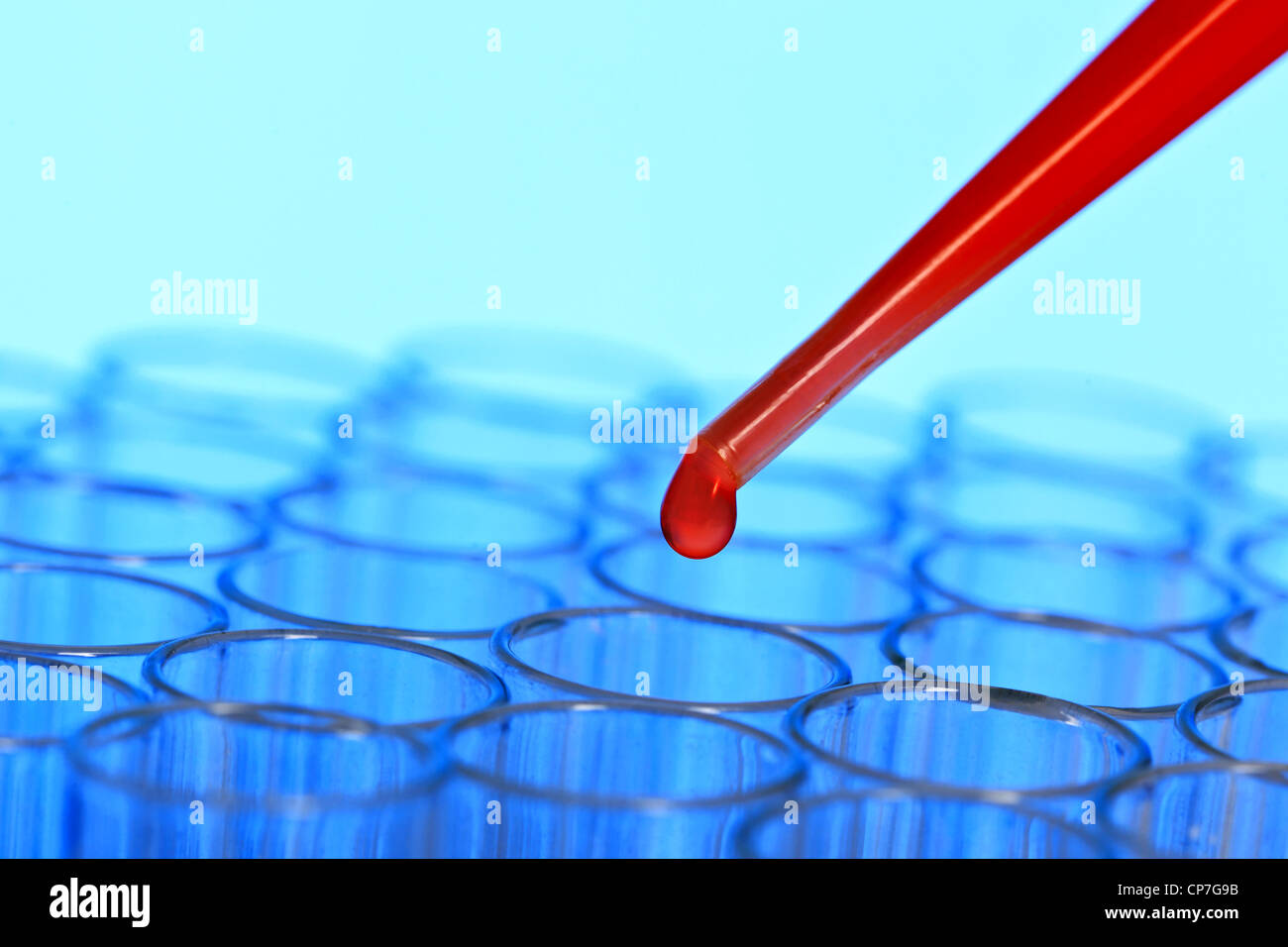 Close up photo of a group of test tubes with a red droplet about to drop from a pipette. - Stock Image