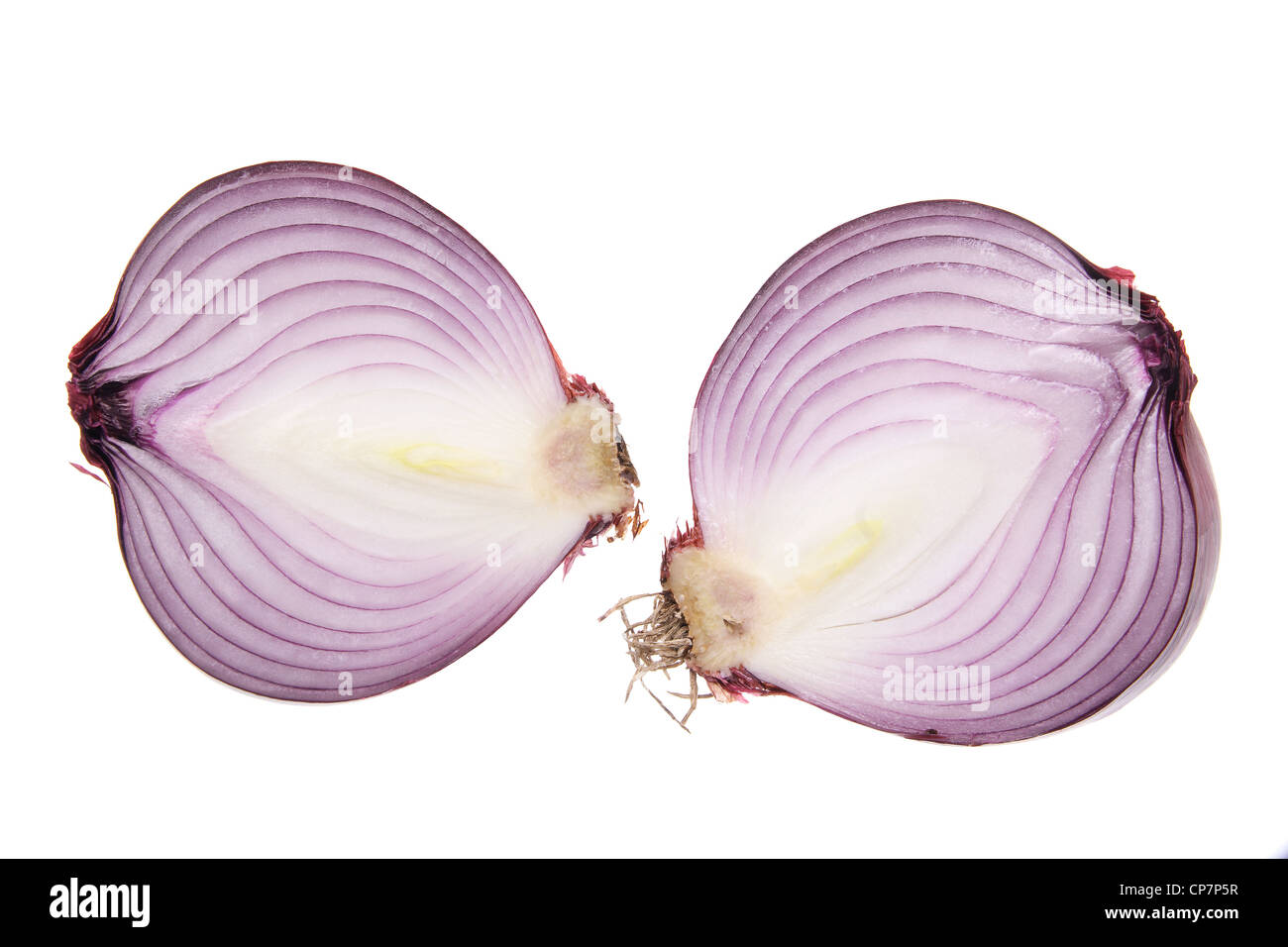 Red Onion - Stock Image