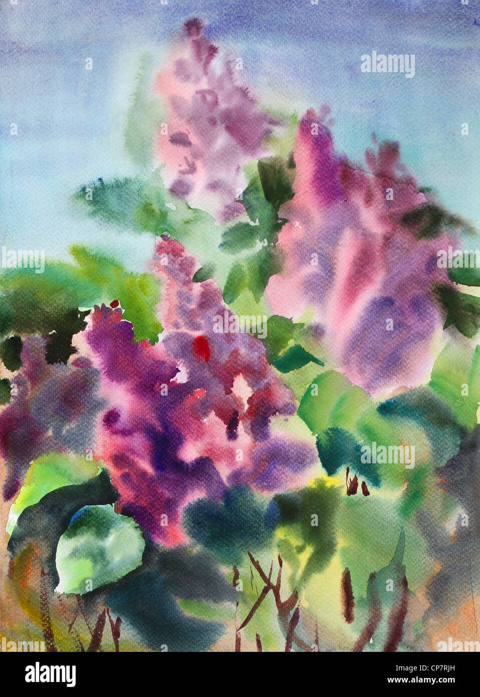 Watercolor Painting Of The Beautiful Flower Appreciation Stock