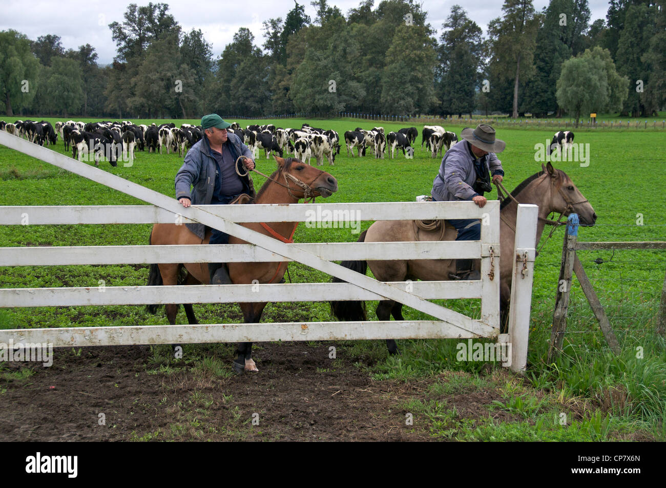 Two gauchos at cattle gate Lake District Chile - Stock Image