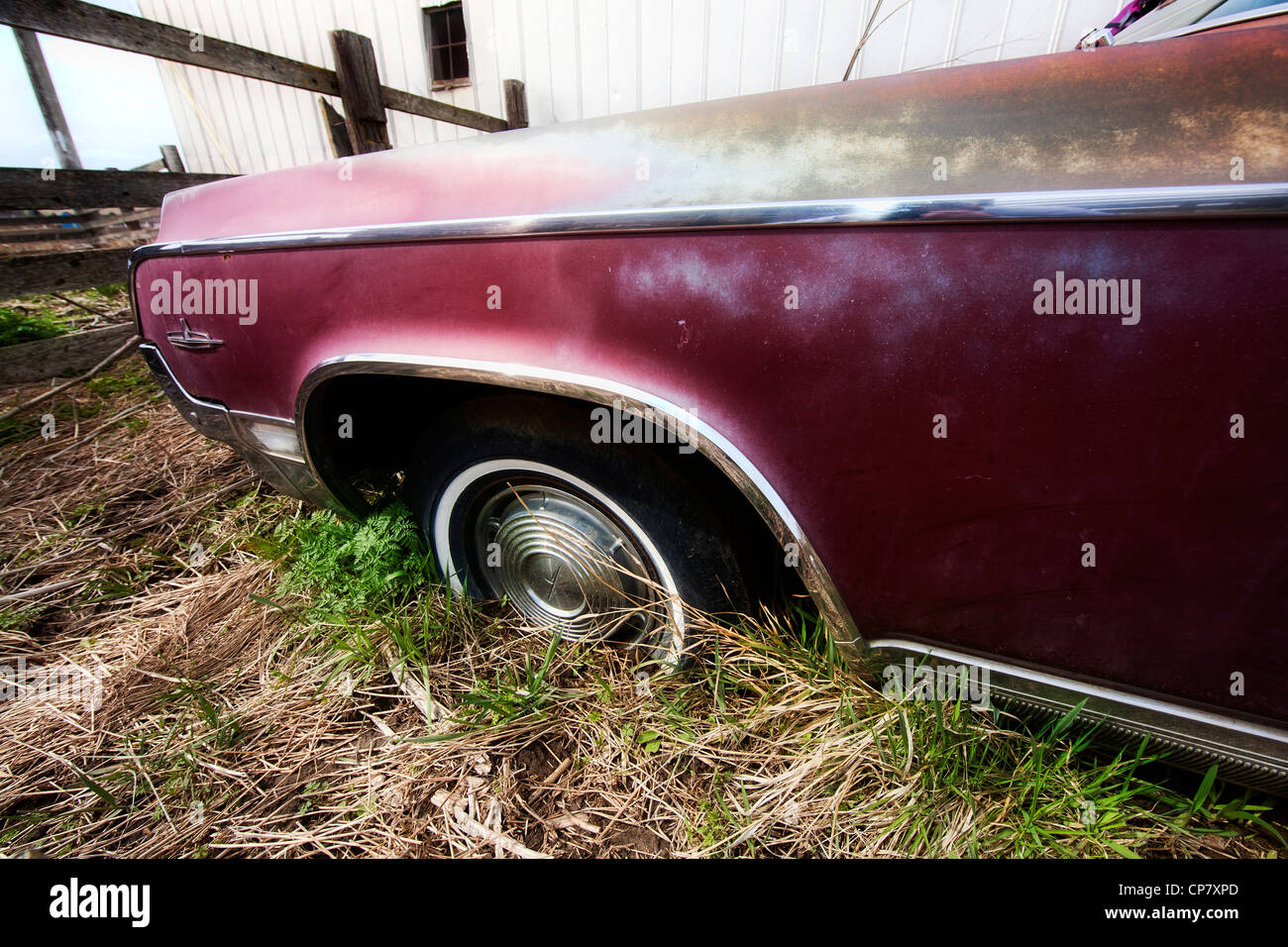 The fender and wheel of an old classic car. - Stock Image