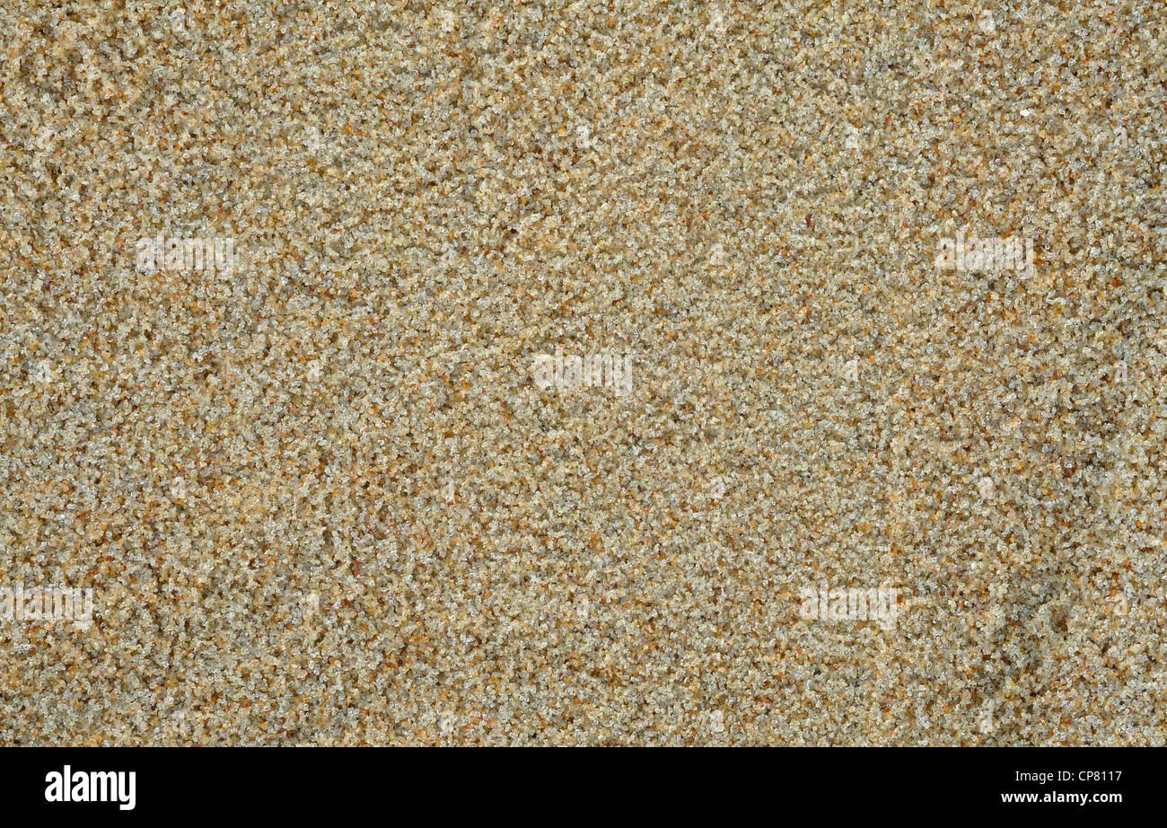 sand background, grains, macro, close up - Stock Image