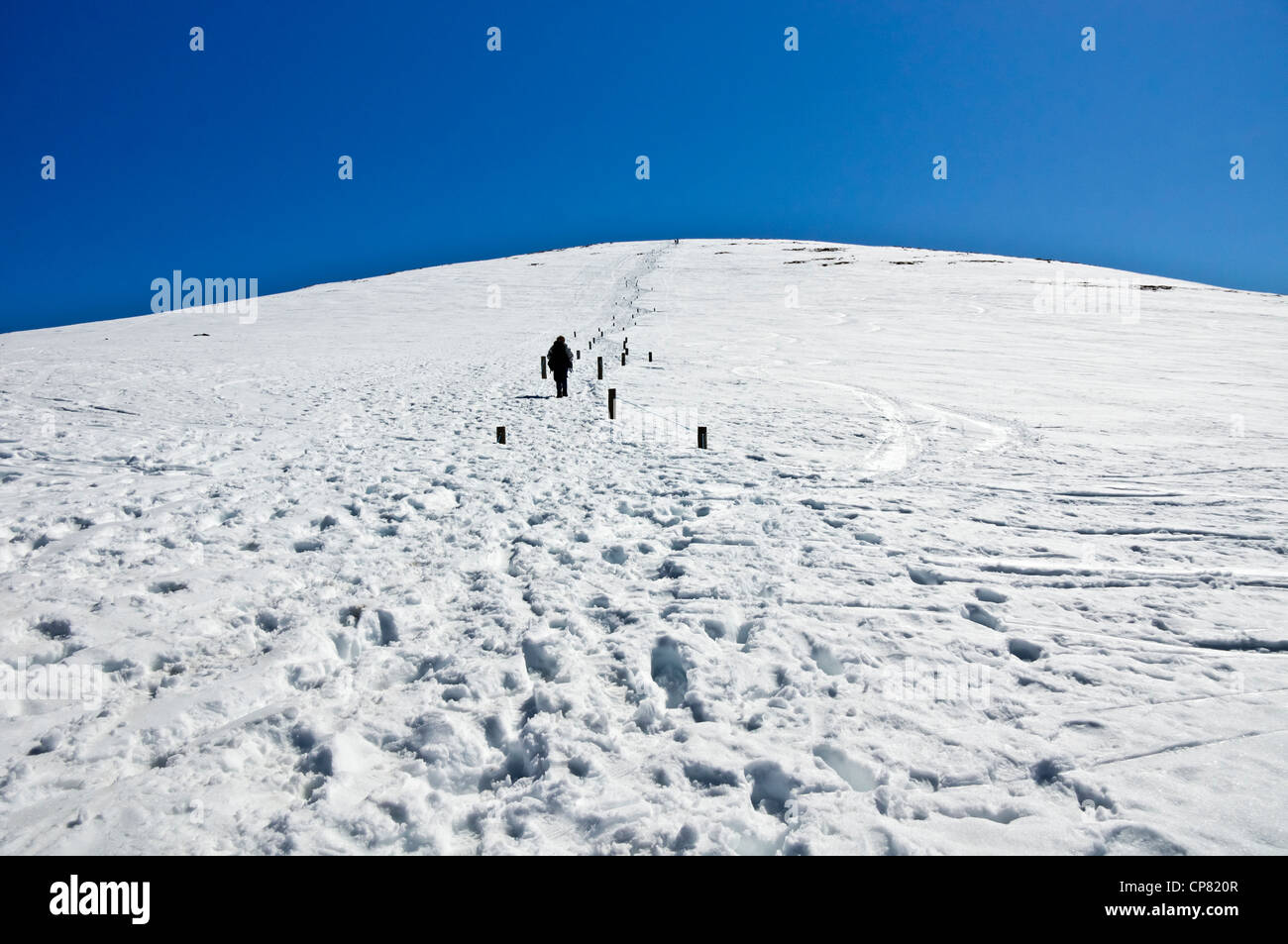A walker ascends mountain Cairn Gorm through the spring snow on a sunny May day in the Cairngorms Highland Scotland Stock Photo