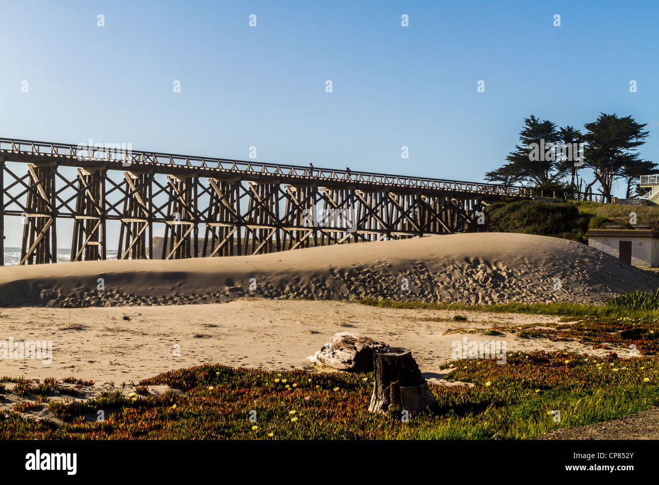 The Pudding Creek Trestle foot bridge part of the Ten Mile Trail in Fort Bragg California - Stock Image