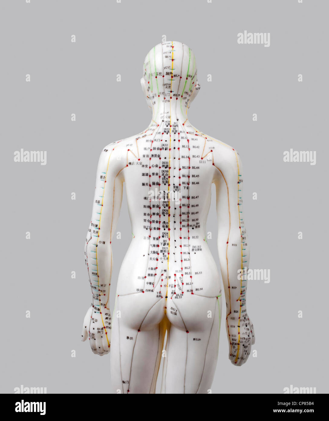 A female model with marked acupuncture points, Chinese characters on the meridians, traditional Chinese medicine; - Stock Image