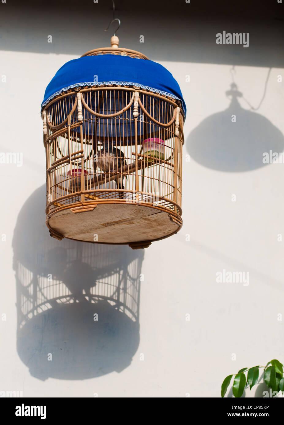 Hanging Bird Cage Stock Photos Amp Hanging Bird Cage Stock