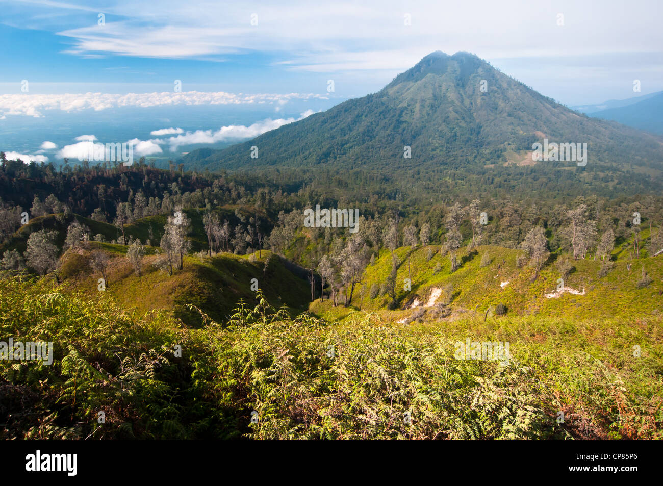Gunung Merapi Volcano on Java Island in Indonesia - Stock Image