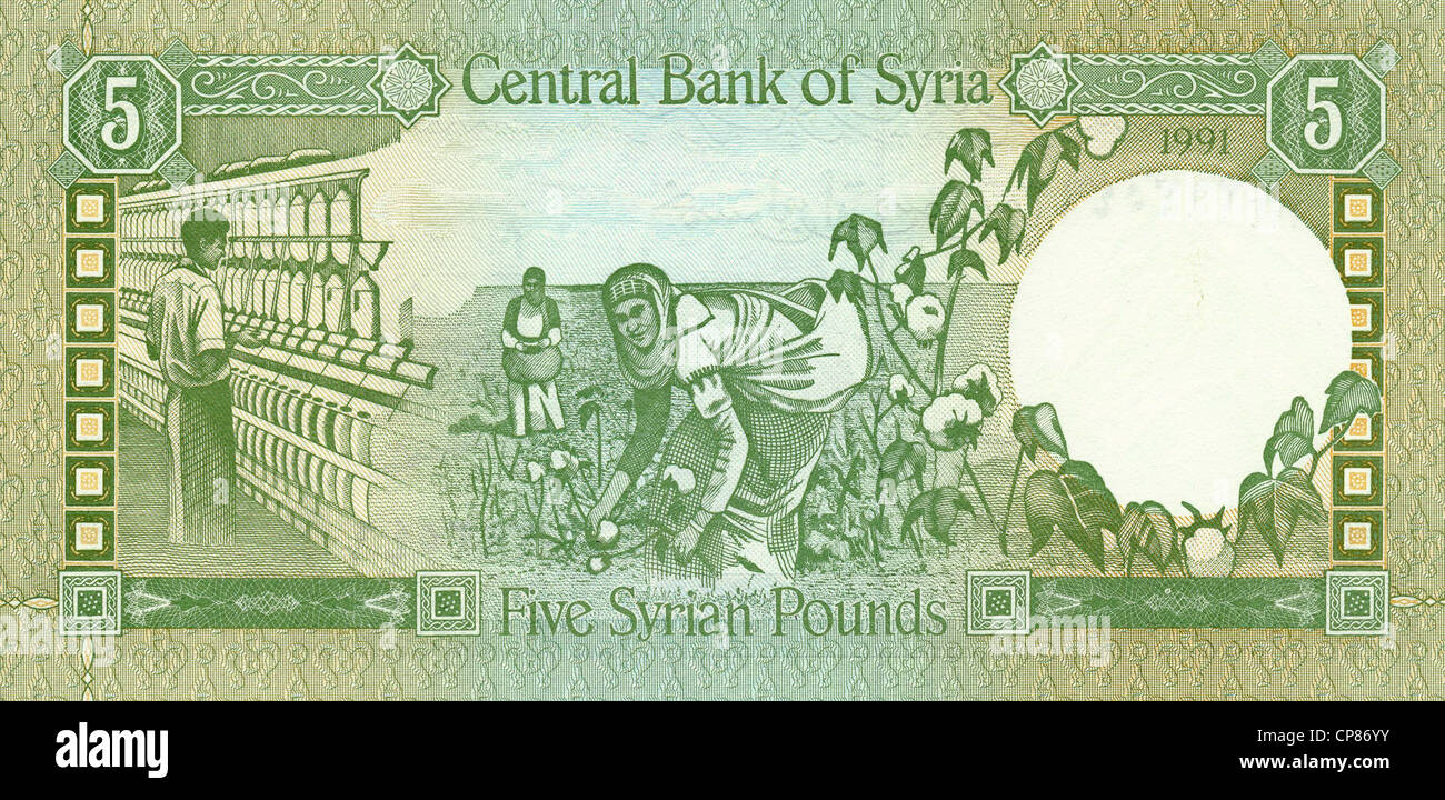 Banknote from Syria, cotton being harvested and spun, 5 Pounds, 1991 - Stock Image