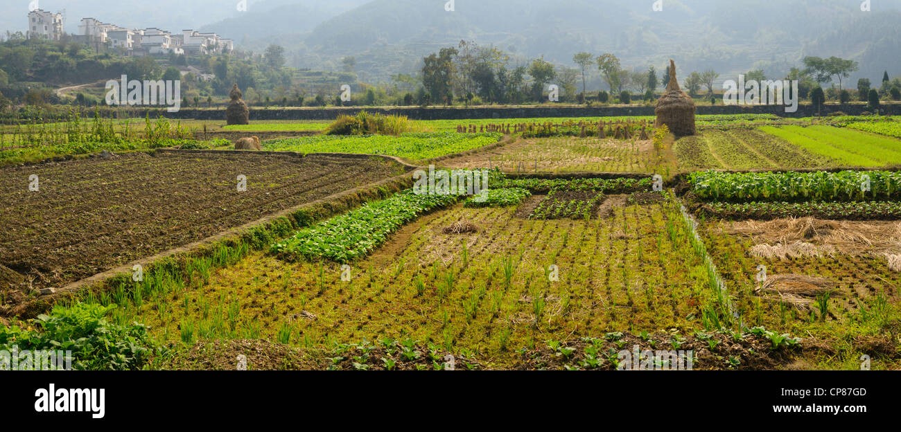 Panorama of Hilltop village and cultivated farm fields at Yanggancun village Huangshan Peoples Republic of China - Stock Image
