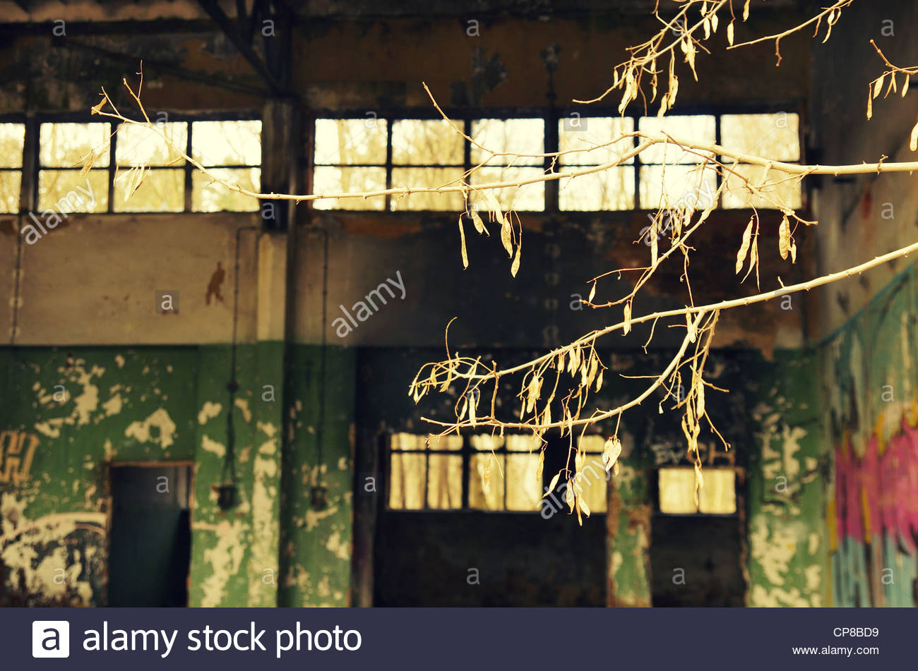 Military compound (former Red Army garrison town) Stock Photo