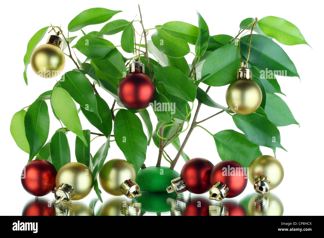 Christmas tree from palm branches with balls and reflection in a mirror. Isolated on white - Stock Image