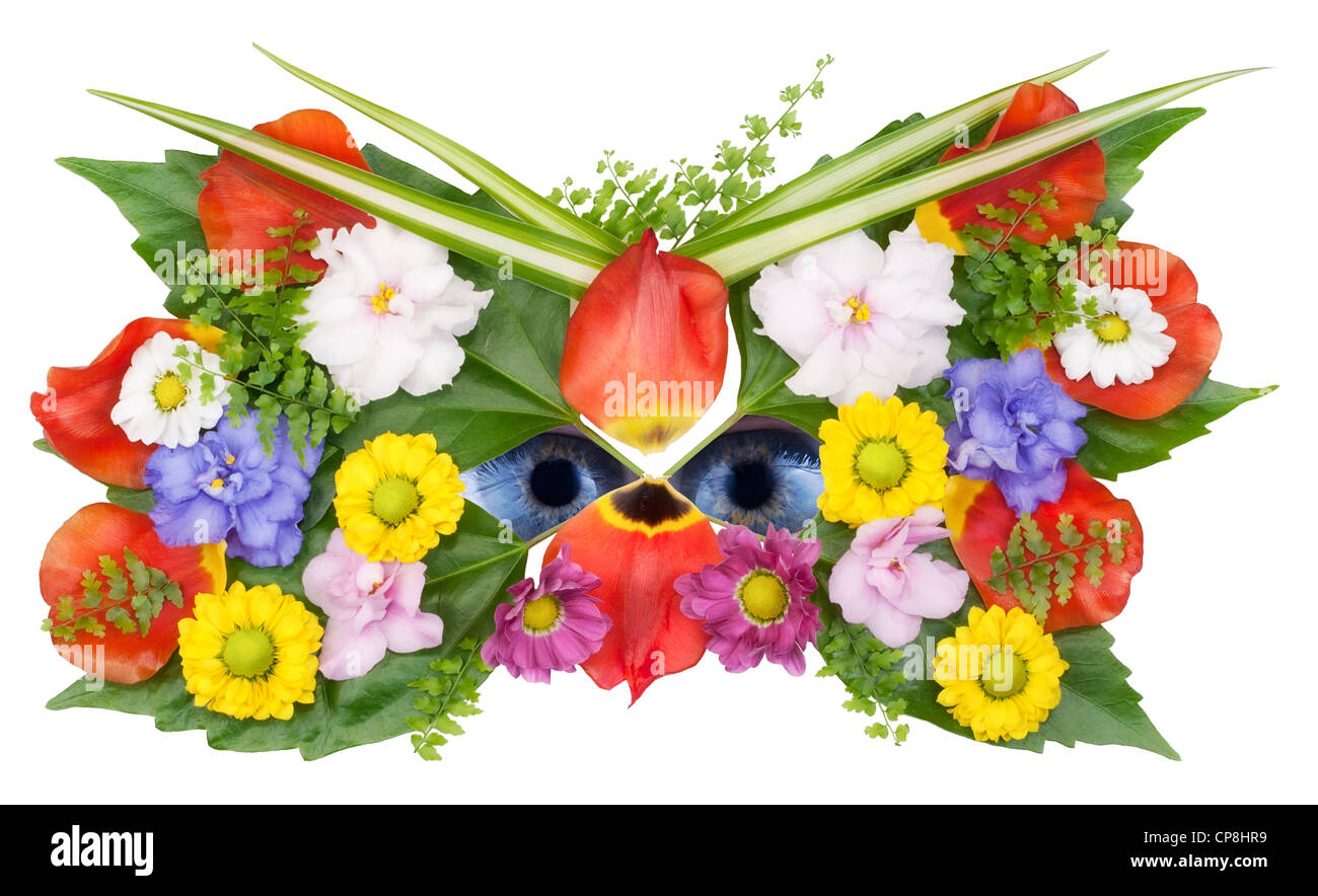 Mask and eyes of wild flower spring concept collage. Isolated on white with eyes patch - Stock Image