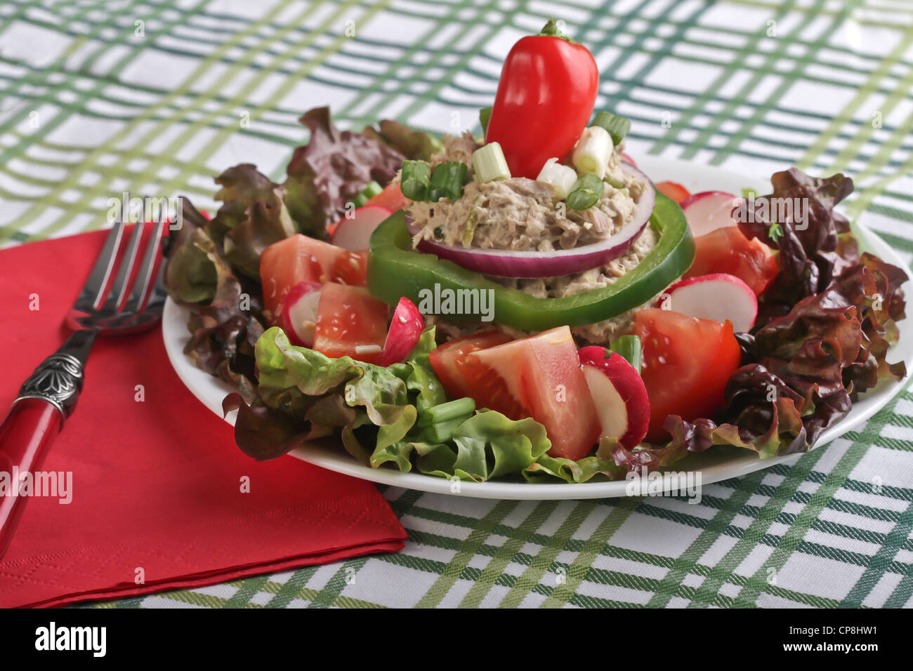A Tuna Salad Plate With Colorful Garnishes On A Green Striped Tablecloth  With Fork On A Red Napkin