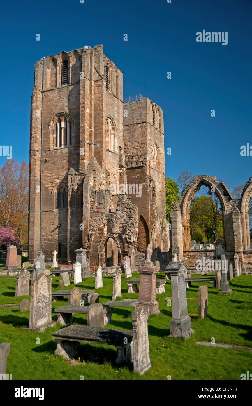 Elgin Cathedral, Moray, Grampian Region. Scotland.  SCO 8219 Stock Photo