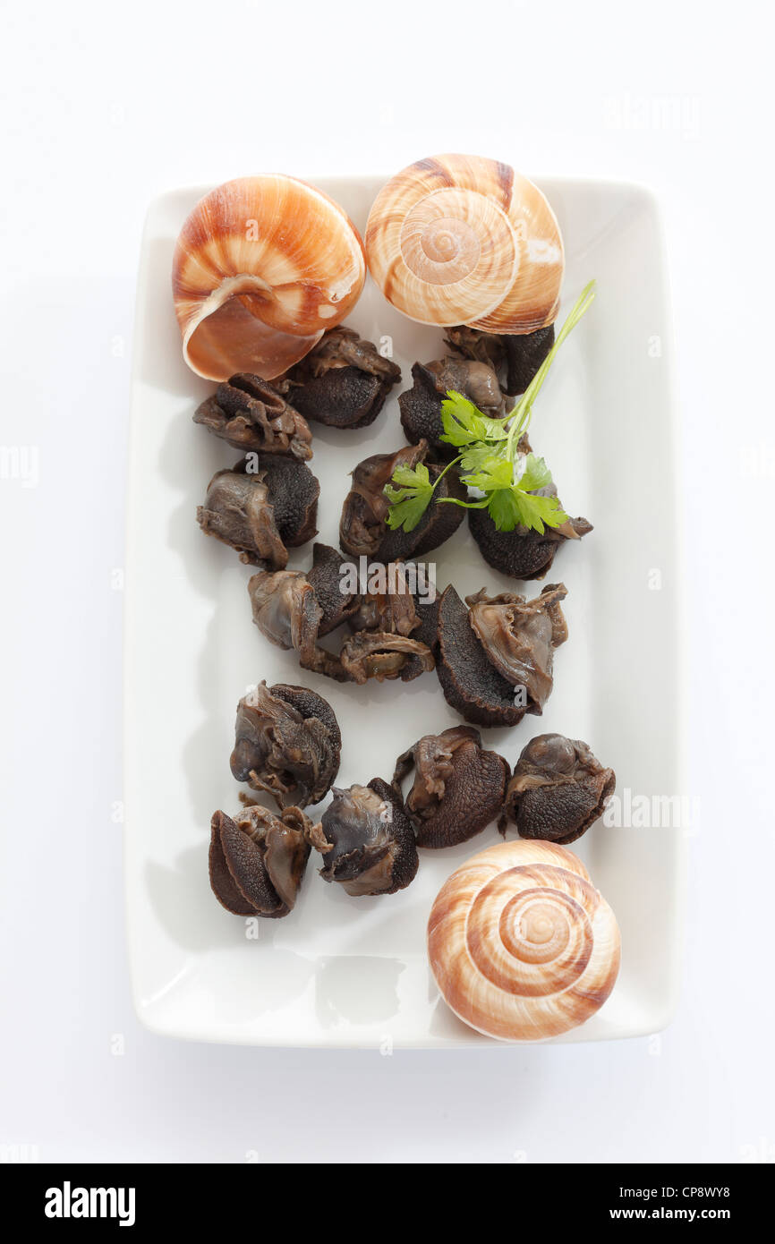Preserved snails in plate on white background - Stock Image