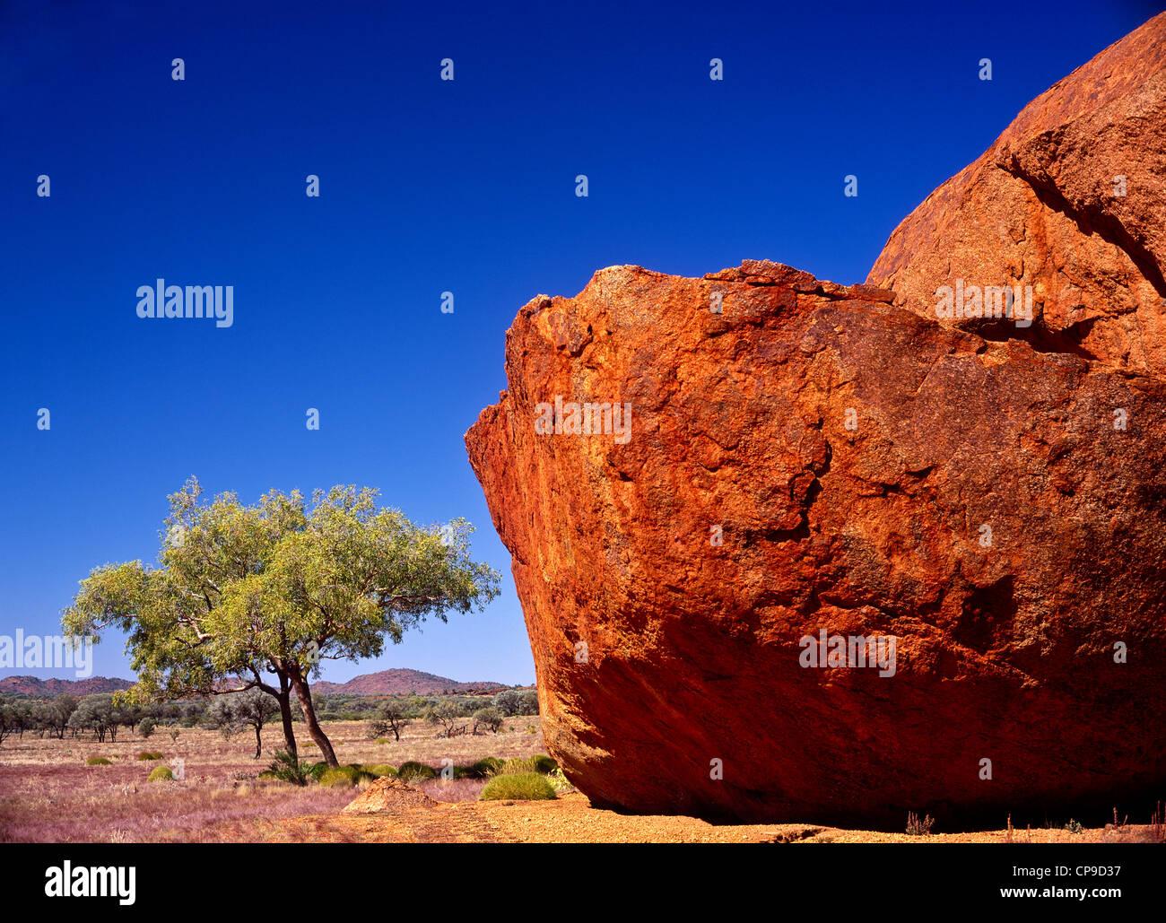 Sandstone boulder, Mann Ranges, Sth Australia - Stock Image