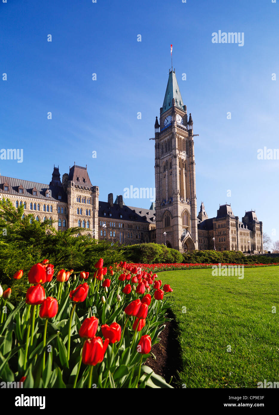 Tulip festival. The Parliament Building. Ottawa, Ontario, Canada springtime scenic May 2012 - Stock Image