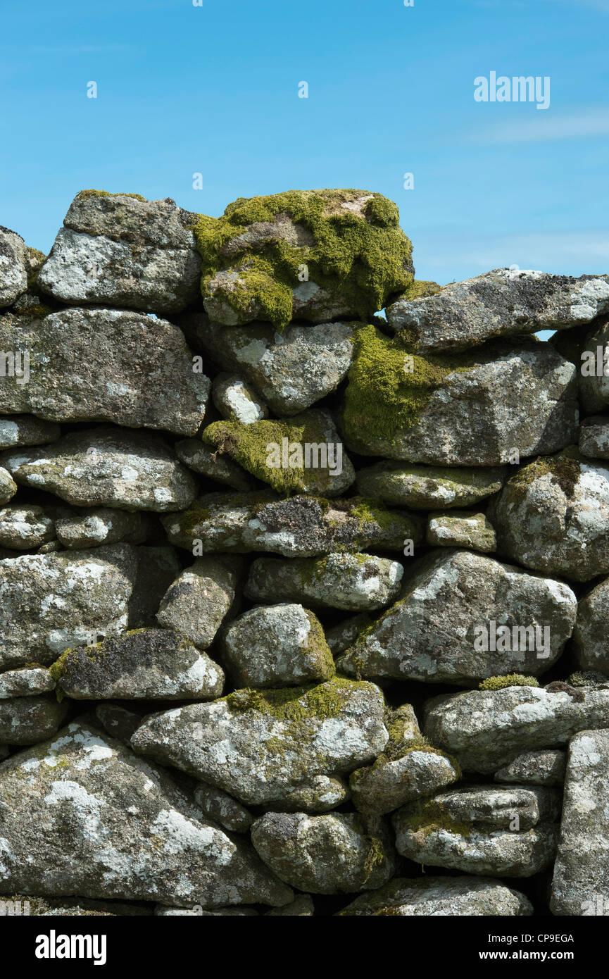 Dry stone wall, Dartmoor National Park, Devon, England - Stock Image
