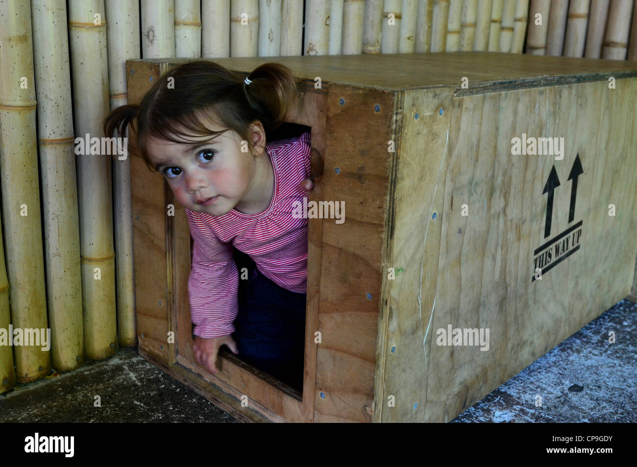 A little girl plays hide and seek game. - Stock Image