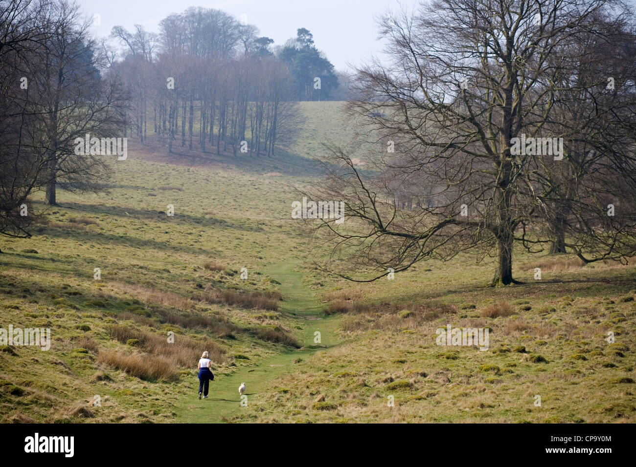 Recreation Women running with dog in Petworth Park UK - Stock Image