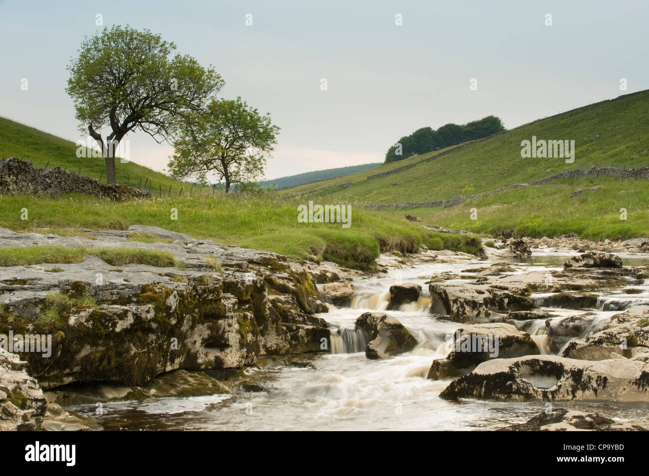 River Wharfe, flowing through quiet scenic narrow v-shaped valley, cascading over limestone rocks - Langstrothdale, Yorkshire Dales, England, UK. Stock Photo