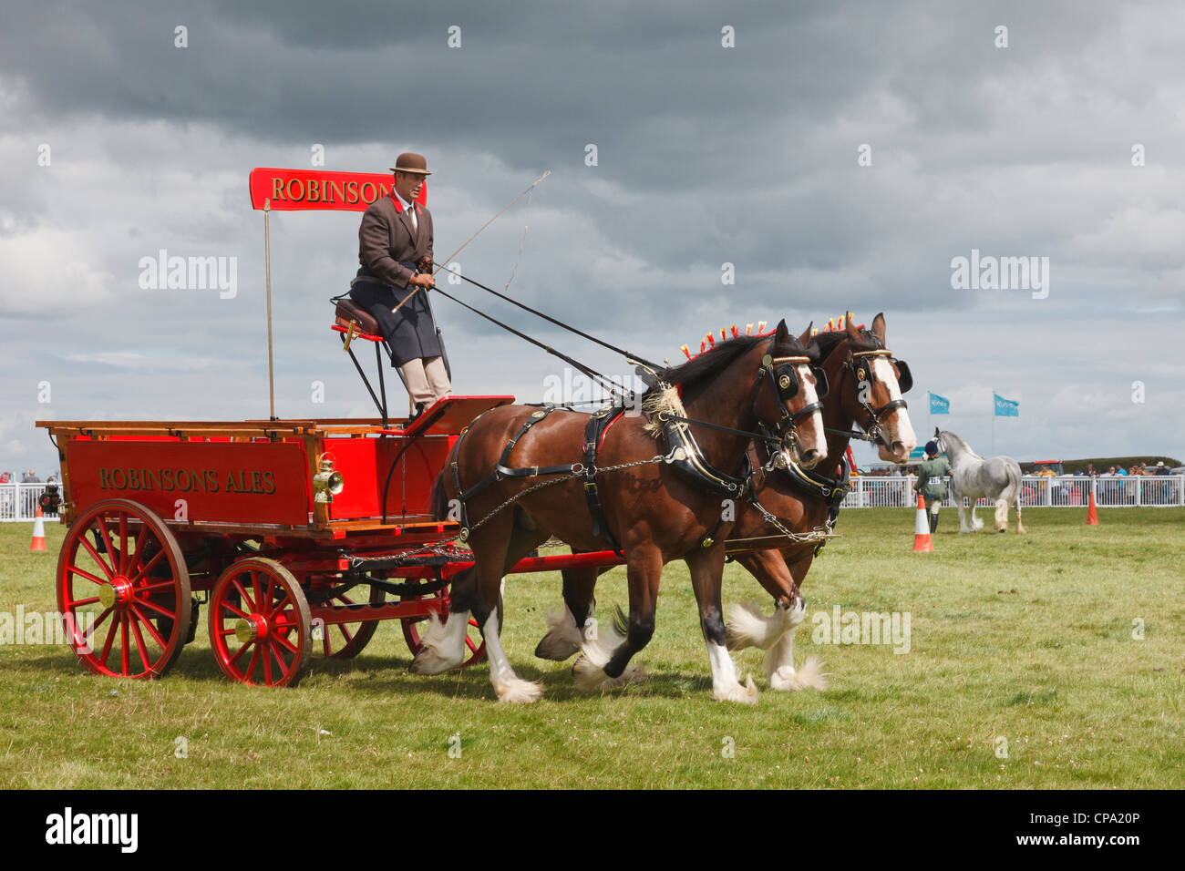 Two Shire horses pulling a Robinsons Ales Brewers Dray at the Anglesey Show in the Mona showground. Anglesey, North - Stock Image