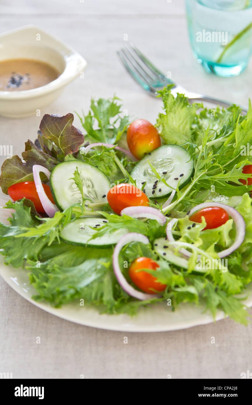 Fresh Salad with sesame dressing - Stock Image