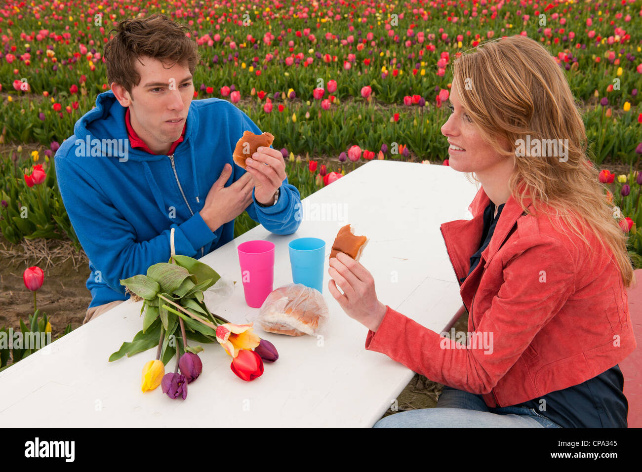 Young couple is having picnic in Dutch flower fields Stock Photo