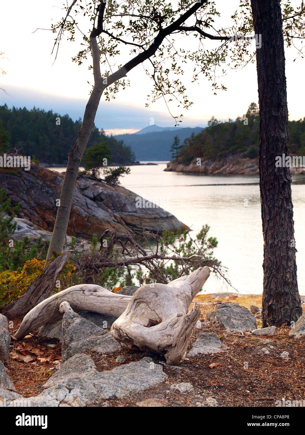 The Curme Islands in Desolation Sound, British Columbia - Stock Image