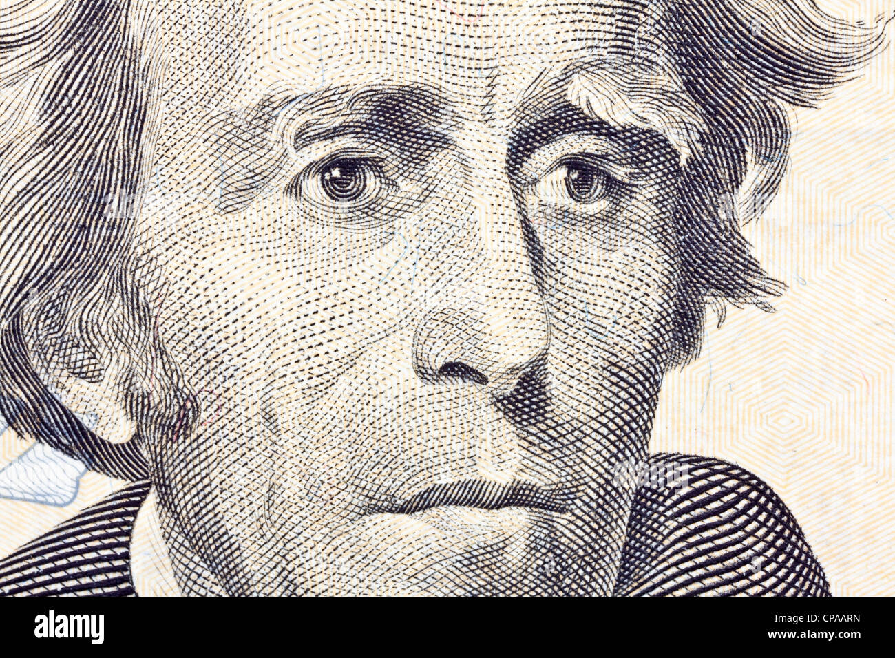 andrew jackson twenty dollar bill